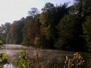 Nebelschwaden auf dem Plötzensee