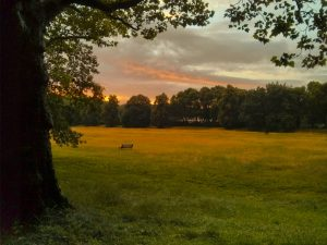 rehberge-sonnenaufgang-park