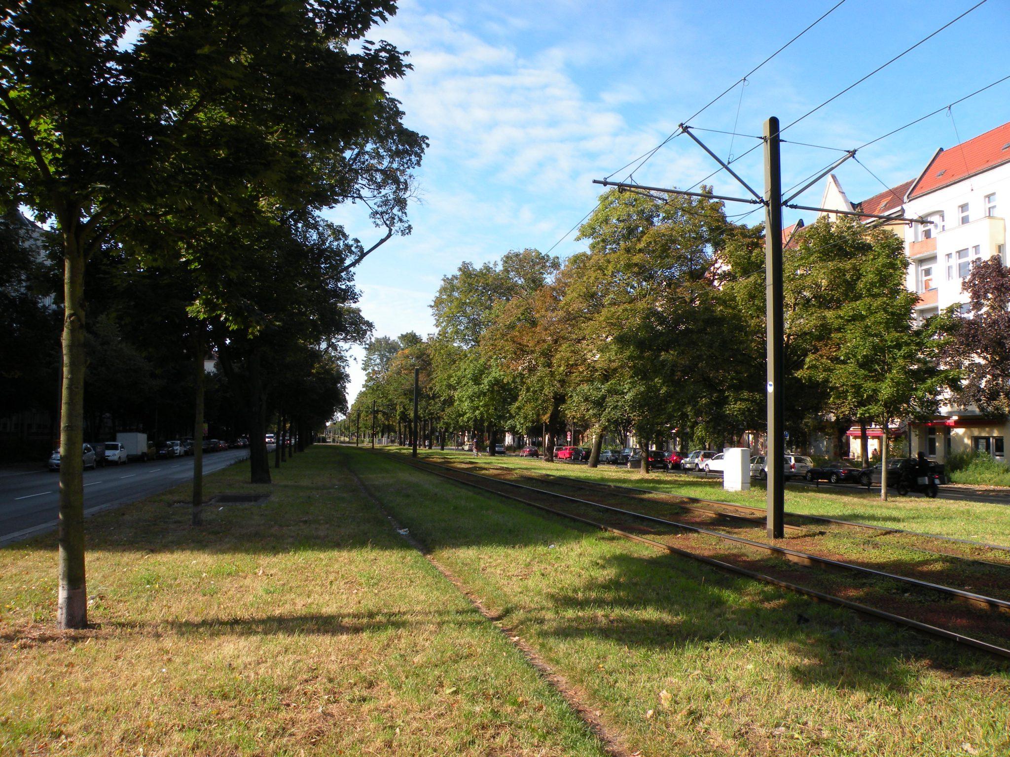Grün trotz Straßenbahn