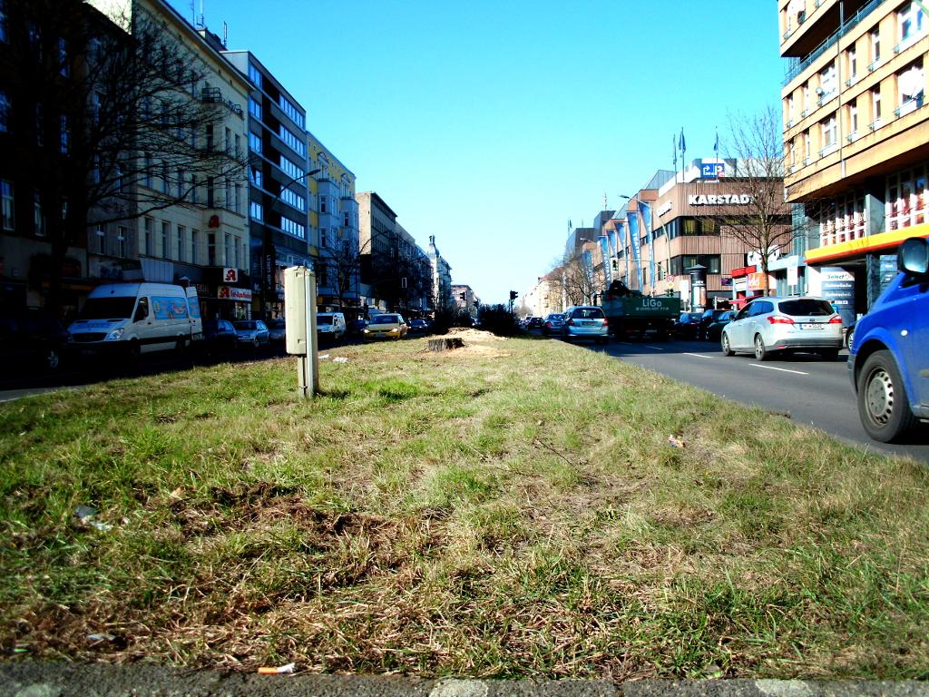 Mittelstreifen-Muellerstrasse