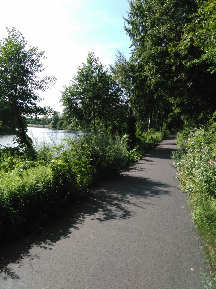 Radweg am Hohenzollernkanal