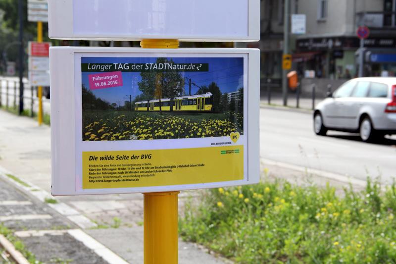 Nächste Station: Gleisführung. Foto: D. Hensel