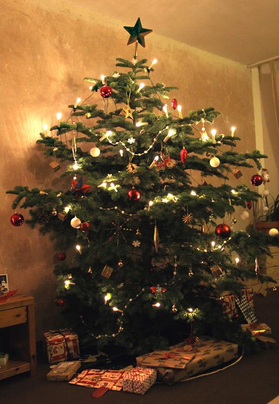 Weihnachtsbaum. Foto: Andrei Schnell