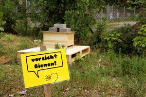 Im Garten wurde geimkert - und die Bienen sollen auch zurückkehren. Foto: D. Hensel