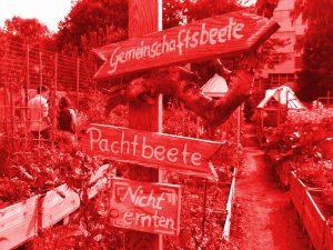Schilder im Himmelbeet. Foto: Hensel