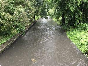 Panke Hochwasser