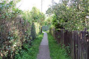 Ein Weg in der Kleingartenanlage Bornholm 1. Foto: Hensel