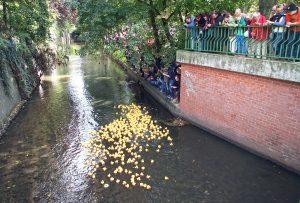 Entenrennen auf der Panke vor fünf Jahren. Foto: Dominique Hensel
