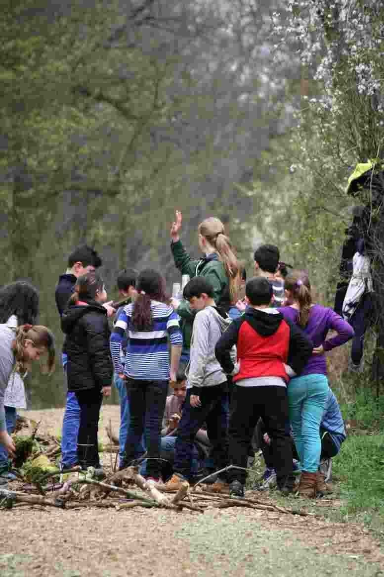 Schüler im Forst