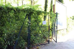 Böttgerstaße 17 - hier entsteht ein neuer Gemeinschaftsgarten. Foto: Agrarbörse