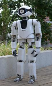 Der humanoide Roboter Myon. Foto: Beuth Hochschule