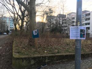 Brache in der Stralsunder Straße. Foto: gruppe F