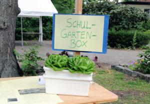 Die Schulgartenbox gewann einen 3. Preis beim Umweltpreis Mitte 2018. Foto: Hensel