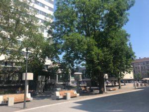 Lesegarten und Rathaushochhaus