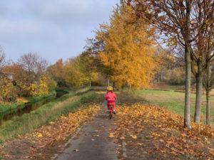 kinderfreundlich: der Panke Radweg am Franzosenbecken