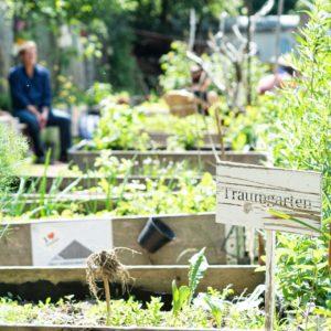 Himmelbeet Foto Andaras Hahn