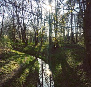 Schwarzer Graben Wasserlauf