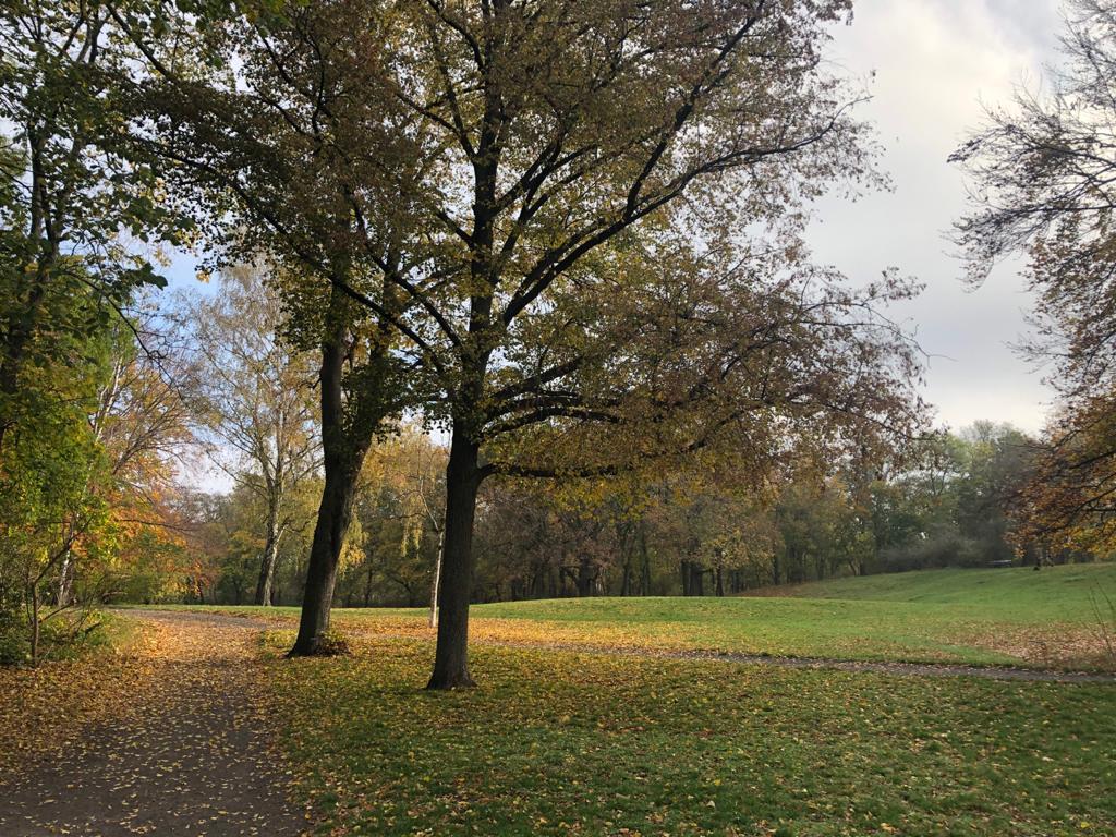 Den Schillerpark im Herbst entdecken